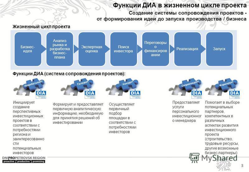 Функции ДИА в жизненном цикле проекта Инициирует создание перспективных инвестиционных проектов в соответствии с потребностями региона и заинтересованности потенциальных инвесторов Формирует и предоставляет первичную аналитическую информацию, необход