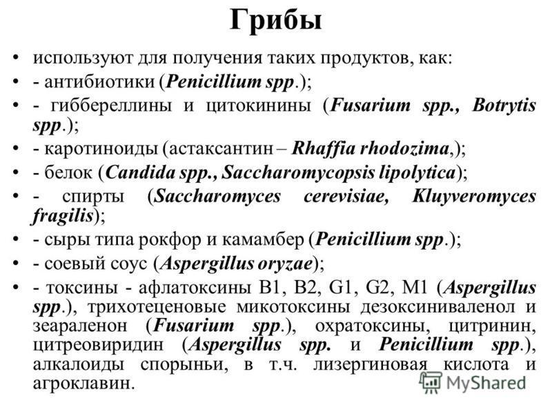 Грибы используют для получения таких продуктов, как: - антибиотики (Penicillium spp.); - гиббереллины и цитокинины (Fusarium spp., Botrytis spp.); - каротиноиды (астаксантин – Rhaffia rhodozima,); - белок (Candida spp., Saccharomycopsis lipolytica);