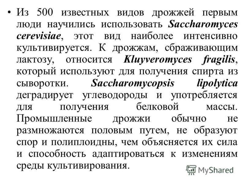 Из 500 известных видов дрожжей первым люди научились использовать Saccharomyces cerevisiae, этот вид наиболее интенсивно культивируется. К дрожжам, сбраживающим лактозу, относится Kluyveromyces fragilis, который используют для получения спирта из сыв