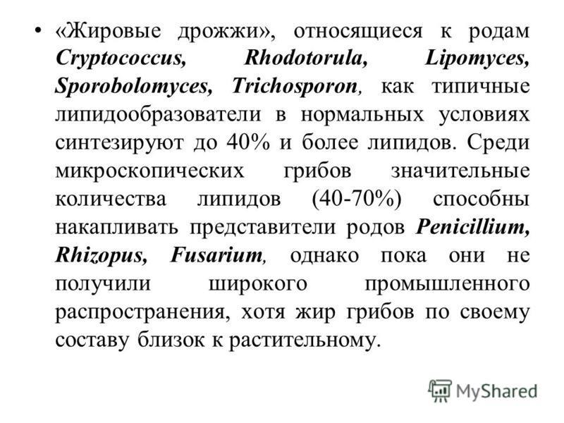 «Жировые дрожжи», относящиеся к родам Cryptococcus, Rhodotorula, Lipomyces, Sporobolomyces, Trichosporon, как типичные липидообразователи в нормальных условиях синтезируют до 40% и более липидов. Среди микроскопических грибов значительные количества