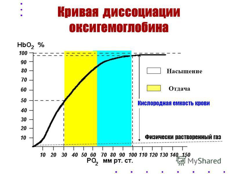ХАРАКТЕРИСТИКИ КРОВИ Hb + O 2 HbO 2 HbO 2 Hb + O 2 Кислородная емкость крови - количество О 2, которое связывается кровью до полного насыщения гемоглобина Константа Гюфнера: 1 г. Hb - 1,36 - 1,34 мл О 2 Кислородная емкость крови = 190 мл О 2 в 1 л. В