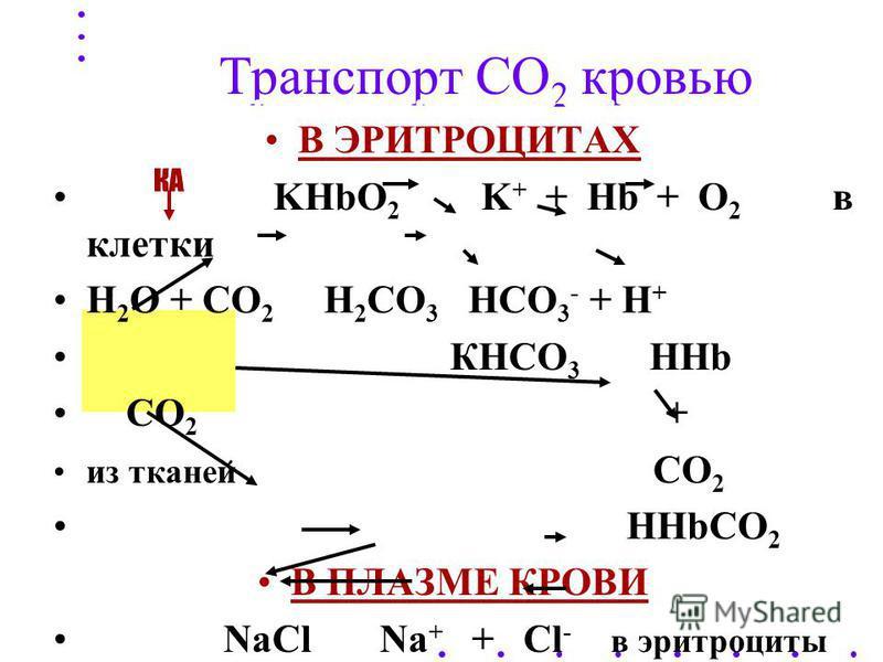 Т ранспорт СО 2 кровью ТРИ ФОРМЫ ТРАНСПОРТА : - физически растворенный газ - 5-10% - химически связанный в бикарбонатах: в плазме NaHCO 3, в эритроцитах КНСО 3 - 80- 90% - связанный в карбаминовых соединениях гемоглобина: Hb. NH 2 + CO 2 HbNHCOOH - 5