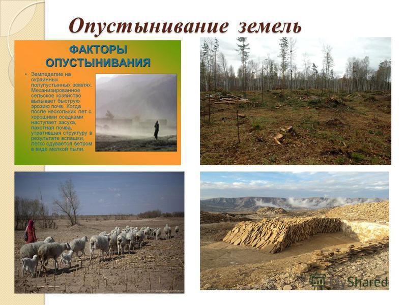 Опустынивание земель