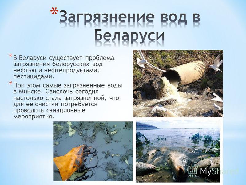 * В Беларуси существует проблема загрязнения белорусских вод нефтью и нефтепродуктами, пестицидами. * При этом самые загрязненные воды в Минске. Свислочь сегодня настолько стала загрязненной, что для ее очистки потребуется проводить санационные мероп