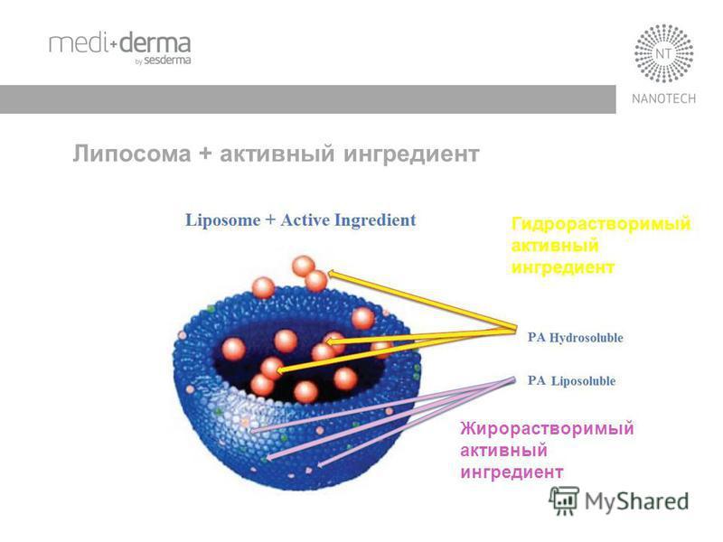 Липосома + активный ингредиент Гидрорастворимый активный ингредиент Жирорастворимый активный ингредиент