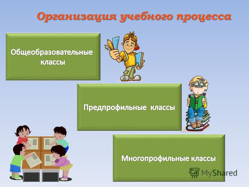 Организация учебного процесса Организация учебного процесса
