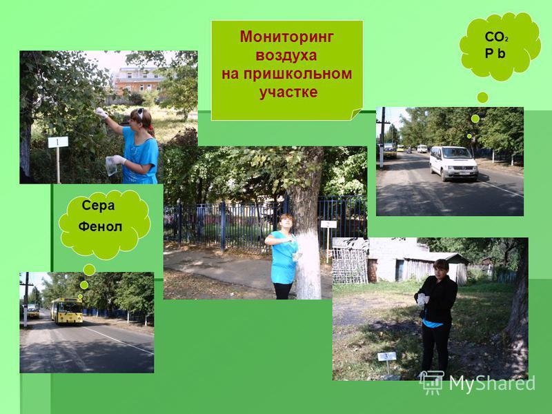 Мониторинг воздуха на пришкольном участке Фенол Сера СО 2 P b
