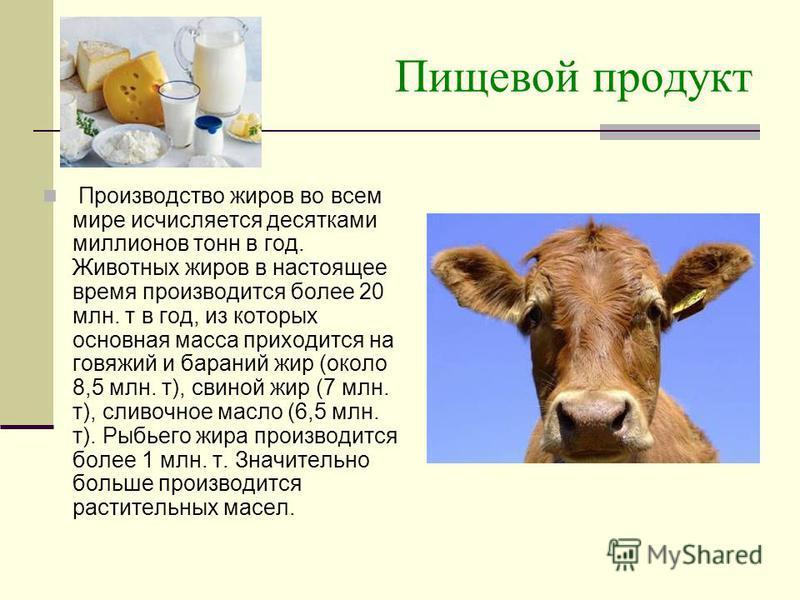 Пищевой продукт Производство жиров во всем мире исчисляется десятками миллионов тонн в год. Животных жиров в настоящее время производится более 20 млн. т в год, из которых основная масса приходится на говяжий и бараний жир (около 8,5 млн. т), свиной