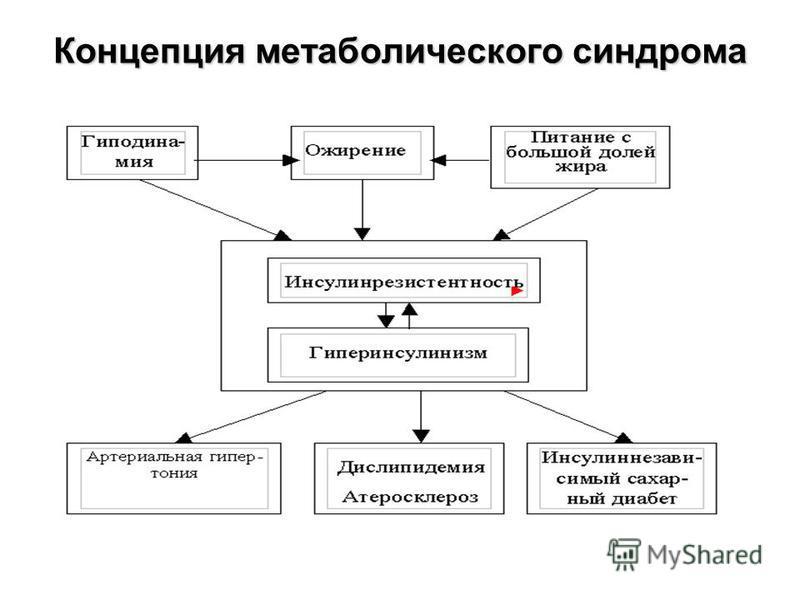 Концепция метаболического синдрома