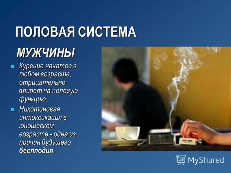 ПОЛОВАЯ СИСТЕМА МУЖЧИНЫ Курение начатое в любом возрасте, отрицательно влияет на половую функцию. Курение начатое в любом возрасте, отрицательно влияет на половую функцию. Никотиновая интоксикация в юношеском возрасте - одна из причин будущего беспло