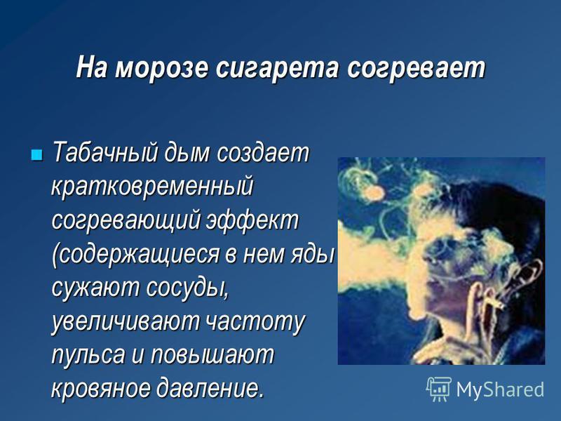 На морозе сигарета согревает Табачный дым создает кратковременный согревающий эффект (содержащиеся в нем яды сужают сосуды, увеличивают частоту пульса и повышают кровяное давление. Табачный дым создает кратковременный согревающий эффект (содержащиеся