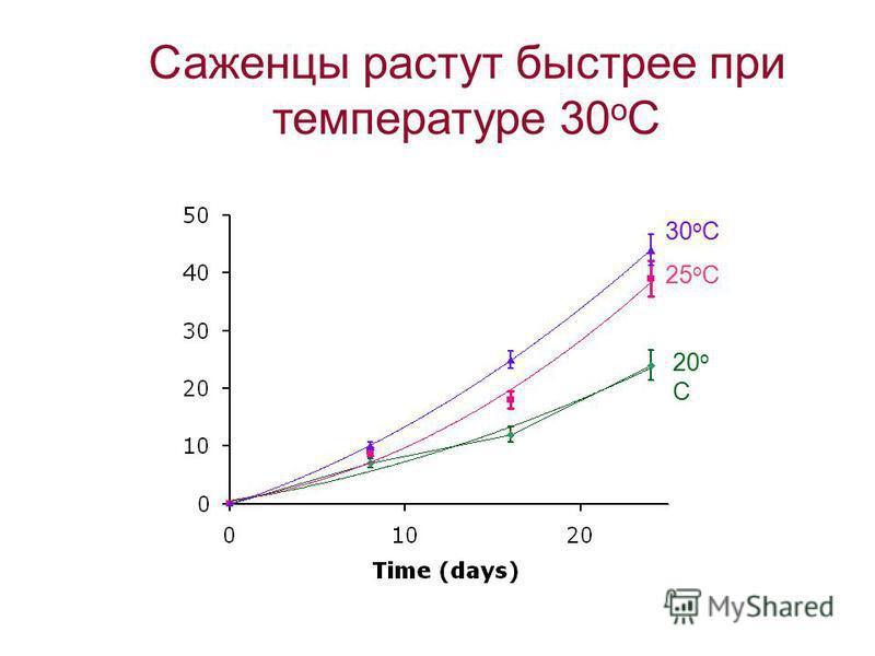 Figure 2. Rate of seedling growth at three different temperatures: 25 o C, 25 o C, and 30 o C. Затемненный фон Лини сетки Граница из Excel Нет значений ст.ошибки Избыточность в названии Мелкие обозначения Избыточность в легенде Скорость роста саженце