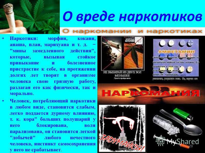 О вреде наркотиков Наркотики: морфин, кокаин, анаша, план, марихуана и т. д.
