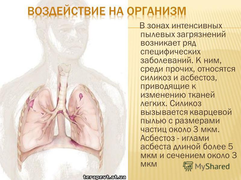 В зонах интенсивных пылевых загрязнений возникает ряд специфических заболеваний. К ним, среди прочих, относятся силикоз и асбестоз, приводящие к изменению тканей легких. Силикоз вызывается кварцевой пылью с размерами частиц около 3 мкм. Асбестоз - иг