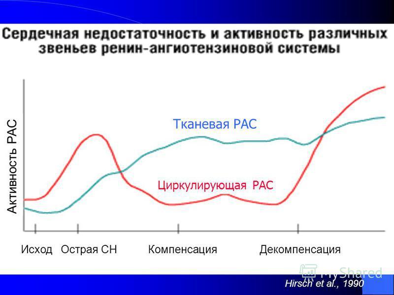 Тканевая РАС Циркулирующая РАС Активность РАС Исход Острая СН Компенсация Декомпенсация Hirsch et al., 1990