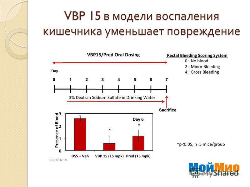 VBP 15 в модели воспаления кишечника уменьшает повреждение