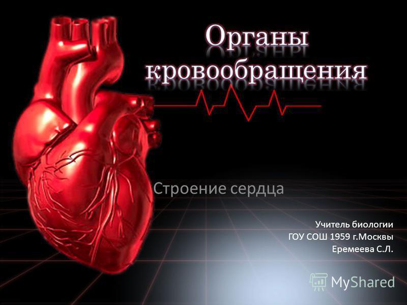 Строение сердца Учитель биологии ГОУ СОШ 1959 г.Москвы Еремеева С.Л.
