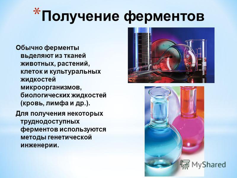 * Получение ферментов Обычно ферменты выделяют из тканей животных, растений, клеток и культуральных жидкостей микроорганизмов, биологических жидкостей (кровь, лимфа и др.). Для получения некоторых труднодоступных ферментов используются методы генетич