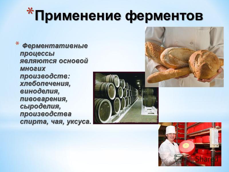 * Применение ферментов Ферментативные процессы являются основой многих производств: хлебопечения, виноделия, пивоварения, сыроделия, производства спирта, чая, уксуса. * Ферментативные процессы являются основой многих производств: хлебопечения, виноде