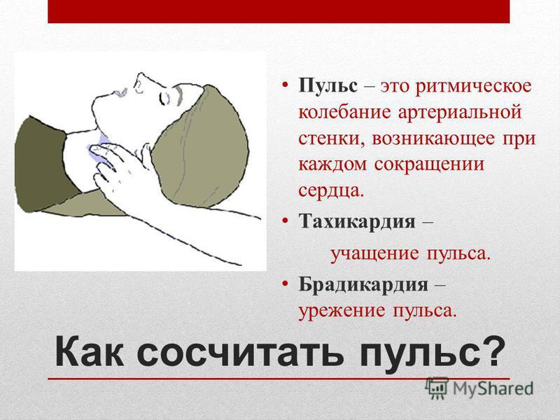 Как сосчитать пульс? Пульс – это ритмическое колебание артериальной стенки, возникающее при каждом сокращении сердца. Тахикардия – учащение пульса. Брадикардия – урежение пульса.