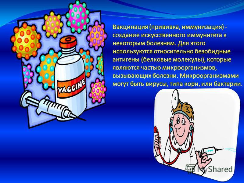 Вакцинация (прививка, иммунизация) - создание искусственного иммунитета к некоторым болезням. Для этого используются относительно безобидные антигены (белковые молекулы), которые являются частью микроорганизмов, вызывающих болезни. Микроорганизмами м