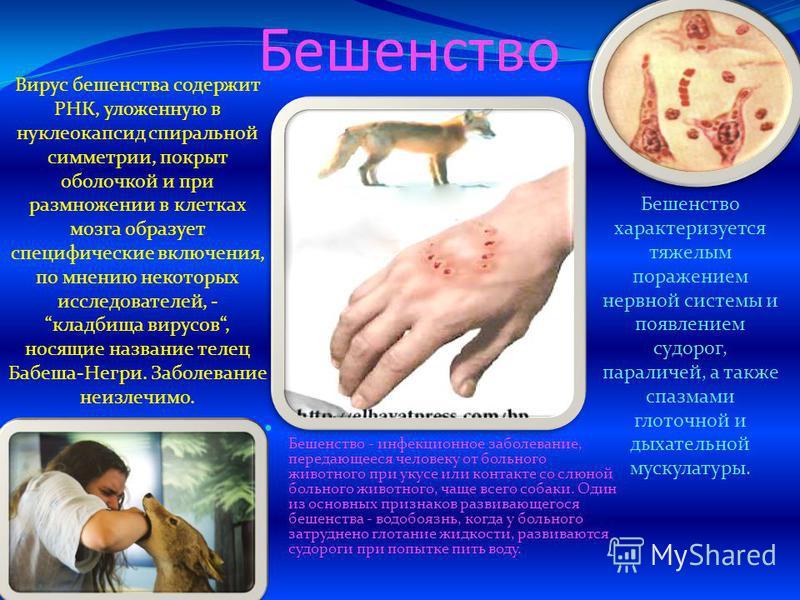 Которым Пользовался Больной Инфекционным Заболеванием фото