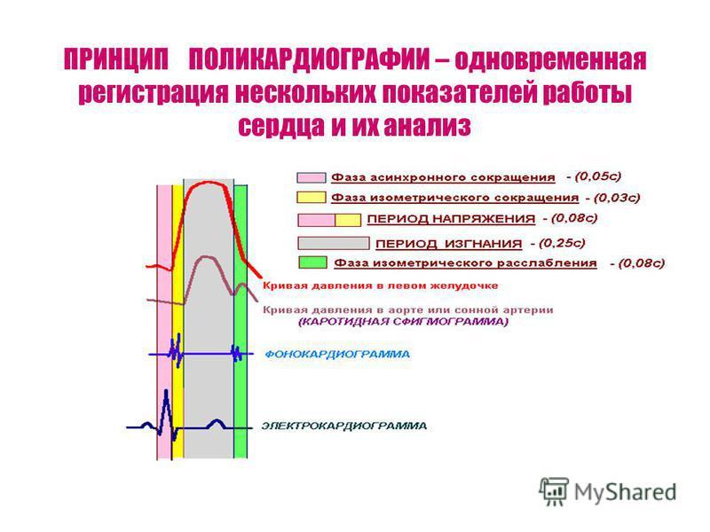 ПРИНЦИП ПОЛИКАРДИОГРАФИИ – одновременная регистрация нескольких показателей работы сердца и их анализ