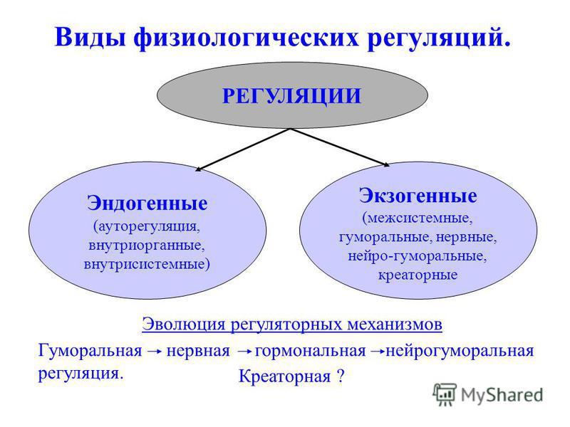 Виды физиологических регуляций. РЕГУЛЯЦИИ Эндогенные (ауторегуляция, внутриорганные, внутрисистемные) Экзогенные (межсистемные, гуморальные, нервные, нейро-гуморальные, креаторные Эволюция регуляторних механизмов Гуморальная нервная гормональная нейр