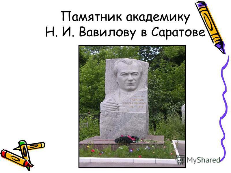Памятник академику Н. И. Вавилову в Саратове