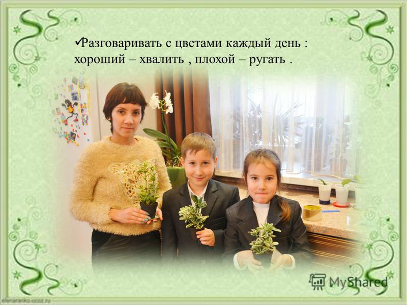 Разговаривать с цветами каждый день : хороший – хвалить, плохой – ругать.