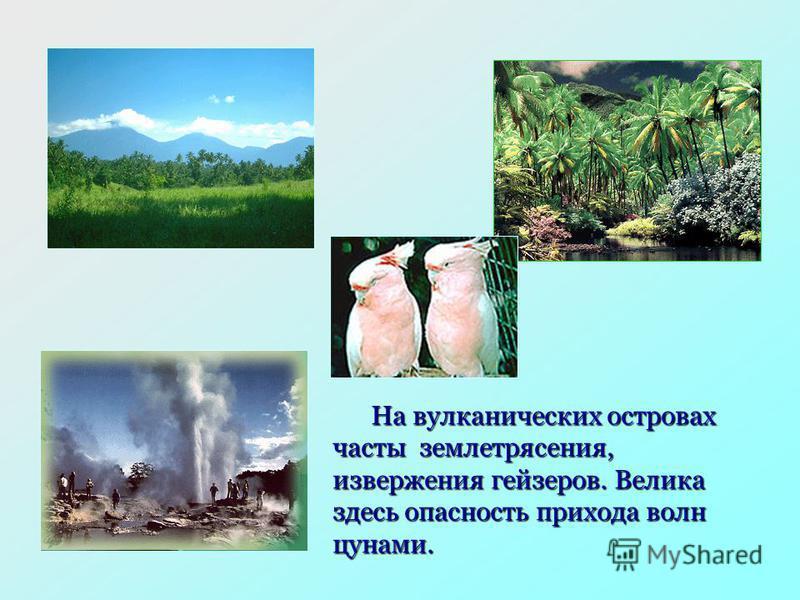 На вулканических островах часты землетрясения, извержения гейзеров. Велика здесь опасность прихода волн цунами.