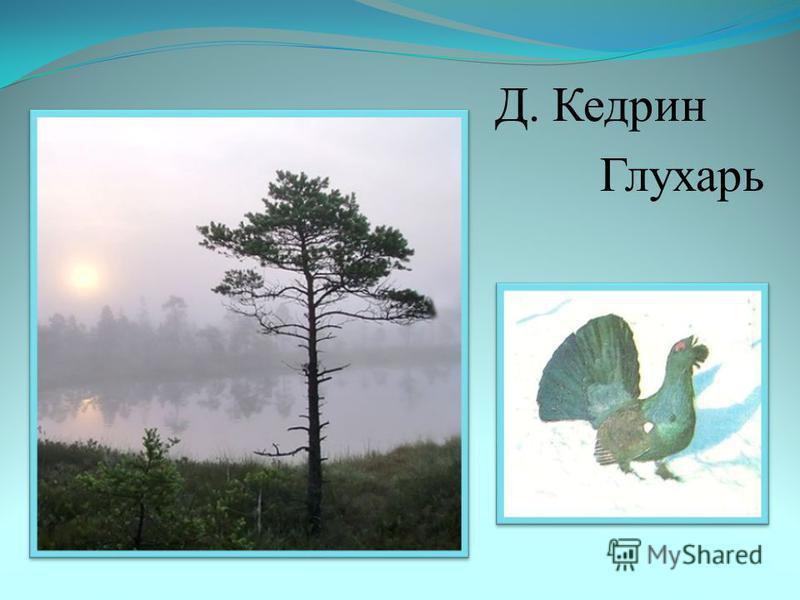 Д. Кедрин Глухарь