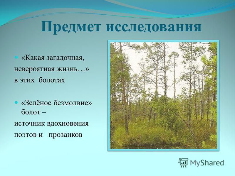 Предмет исследования «Какая загадочная, невероятная жизнь…» в этих болотах «Зелёное безмолвие» болот – источник вдохновения поэтов и прозаиков