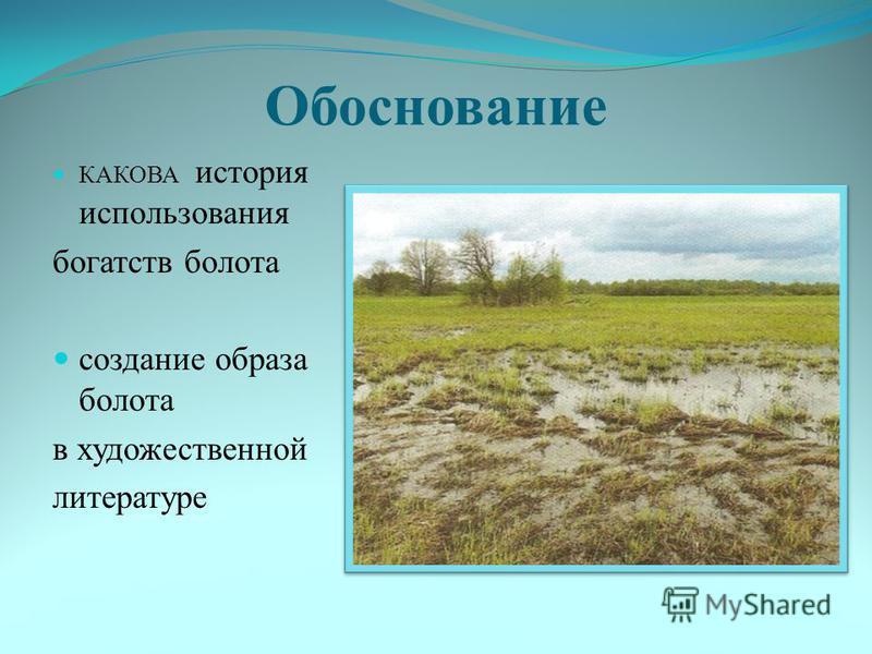 Обоснование КАКОВА история использования богатств болота создание образа болота в художественной литературе