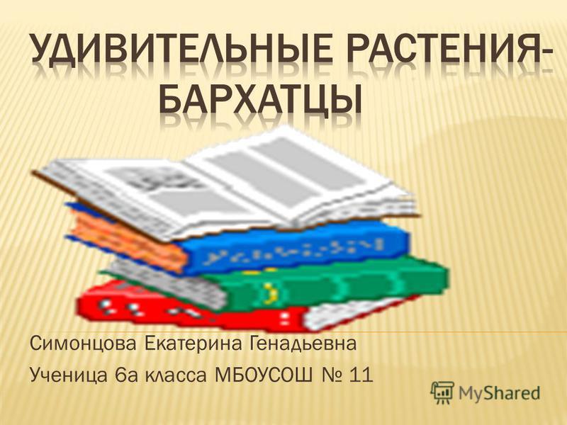 Симонцова Екатерина Генадьевна Ученица 6 а класса МБОУСОШ 11