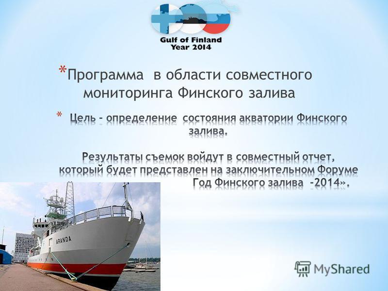 * Программа в области совместного мониторинга Финского залива