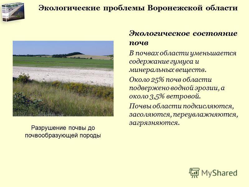 Реферат на тему экологические проблемы воронежской области 2751
