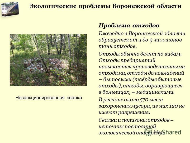 Экологические проблемы Воронежской области Проблема отходов Ежегодно в Воронежской области образуется от 4 до 9 миллионов тонн отходов. Отходы обычно делят по видам. Отходы предприятий называются производственными отходами, отходы домовладений – быто