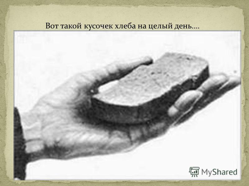 Вот такой кусочек хлеба на целый день….