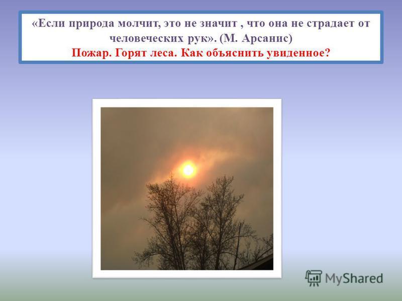 «Если природа молчит, это не значит, что она не страдает от человеческих рук». (М. Арсанис) Пожар. Горят леса. Как объяснить увиденное?