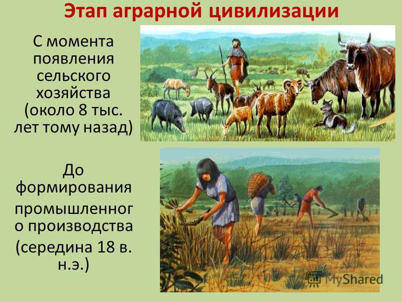 Уровень влияния на природу. Первобытный человек брал от природы столько, сколько ему было необходимо для питания. Хотя существенно влиял на численность отдельных видов животных и растений.