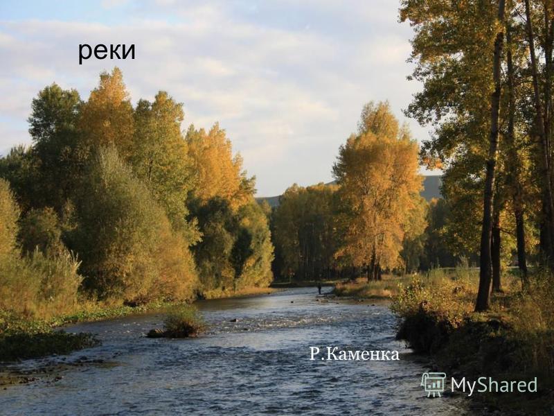 Р.Каменка реки