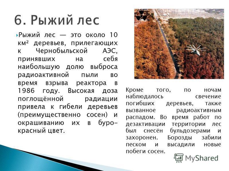Рыжий лес это около 10 км² деревьев, прилегающих к Чернобыльской АЭС, принявших на себя наибольшую долю выброса радиоактивной пыли во время взрыва реактора в 1986 году. Высокая доза поглощённой радиации привела к гибели деревьев (преимущественно сосе