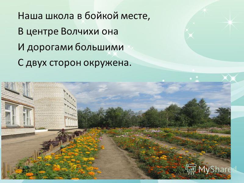 Наша школа в бойкой месте, В центре Волчихи она И дорогами большими С двух сторон окружена.