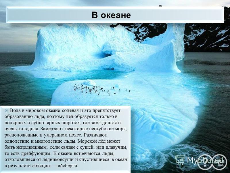 Вода в мировом океане солёная и это препятствует образованию льда, поэтому лёд образуется только в полярных и субполярных широтах, где зима долгая и очень холодная. Замерзают некоторые неглубокие моря, расположенные в умеренном поясе. Различают однол