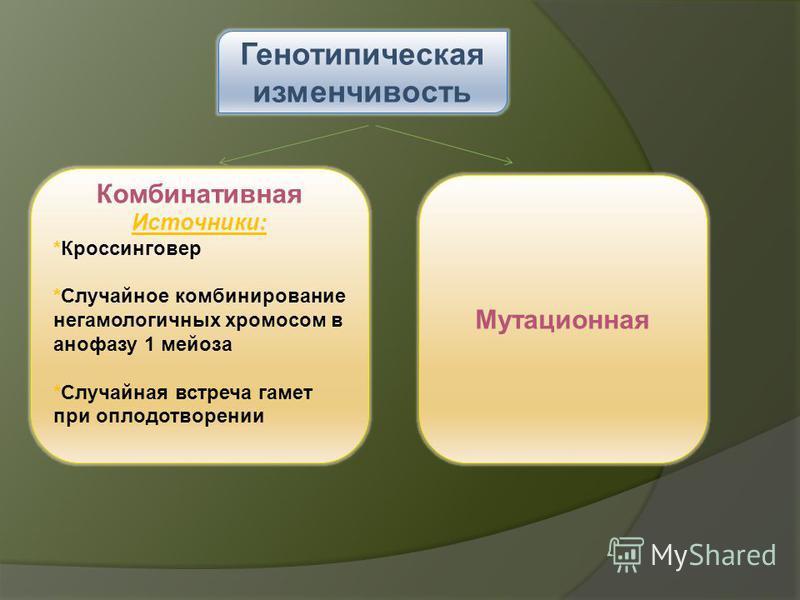 Генотипическая изменчивость Комбинативная Источники: *Кроссинговер *Случайное комбинирование негомологичных хромосом в анафазу 1 мейоза *Случайная встреча гамет при оплодотворении Мутационная