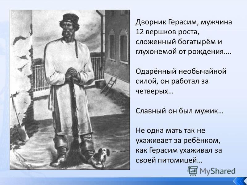 Дворник Герасим, мужчина 12 вершков роста, сложенный богатырём и глухонемой от рождения…. Одарённый необычайной силой, он работал за четверых… Славный он был мужик… Не одна мать так не ухаживает за ребёнком, как Герасим ухаживал за своей питомицей…