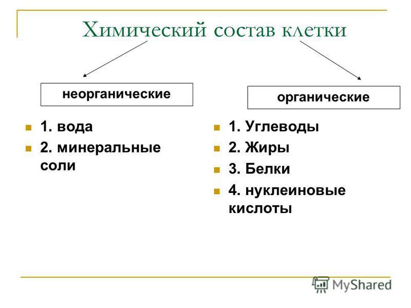 Химический состав клетки 1. вода 2. минеральные соли 1. Углеводы 2. Жиры 3. Белки 4. нуклеиновые кислоты неорганические органические