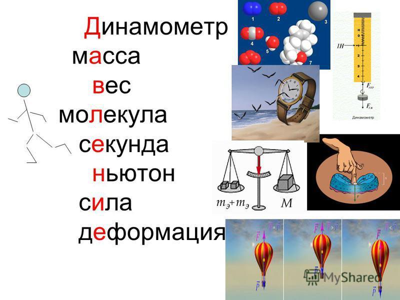 Динамометр масса вес молекула секунда ньютон сила деформация