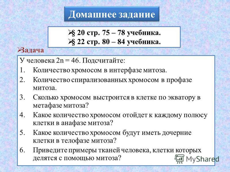 Домашнее задание § 20 стр. 75 – 78 учебника. § 22 стр. 80 – 84 учебника. Задача У человека 2n = 46. Подсчитайте: 1. Количество хромосом в интерфазе митоза. 2. Количество спирализованных хромосом в профазе митоза. 3. Сколько хромосом выстроится в клет